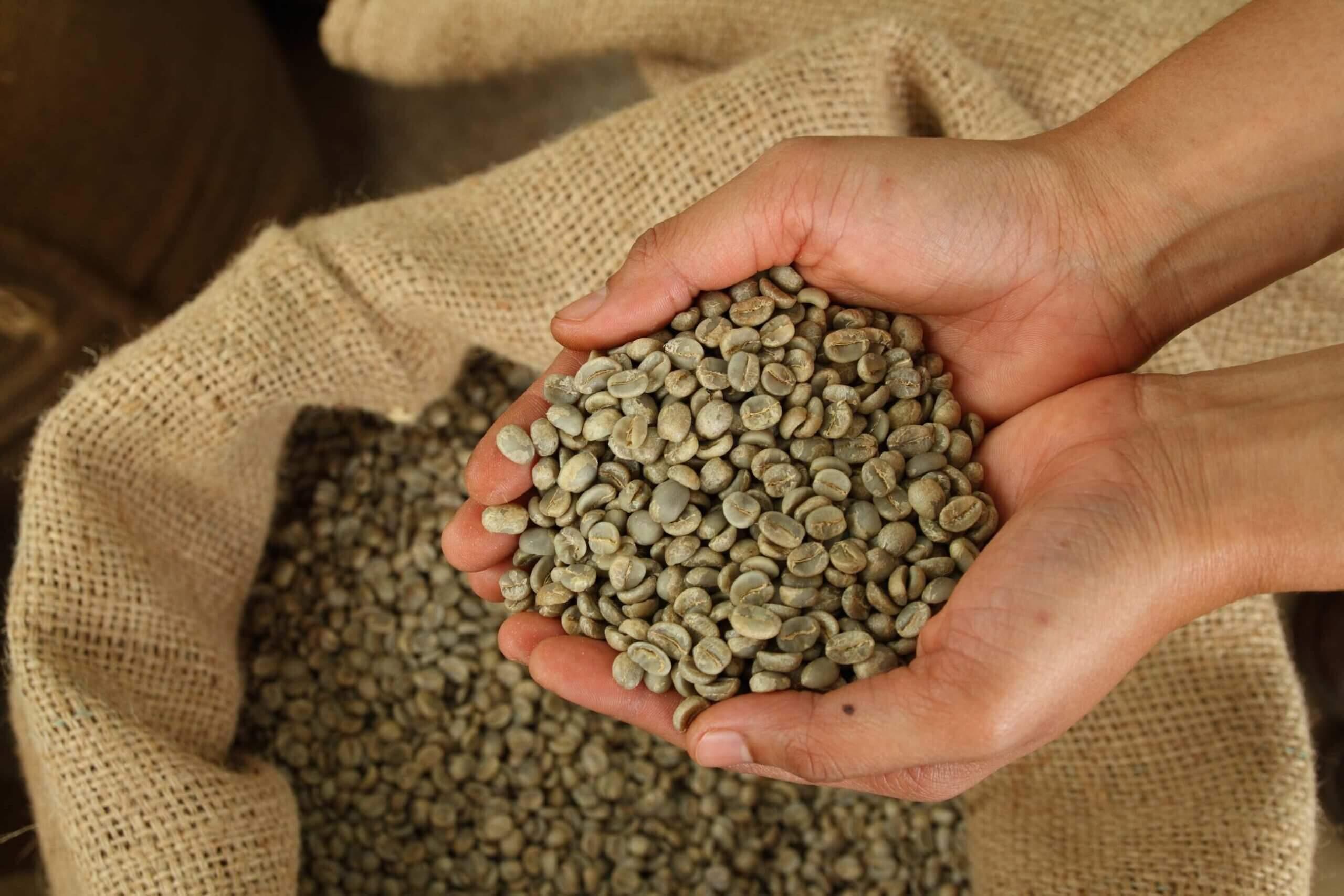 кафе арабика