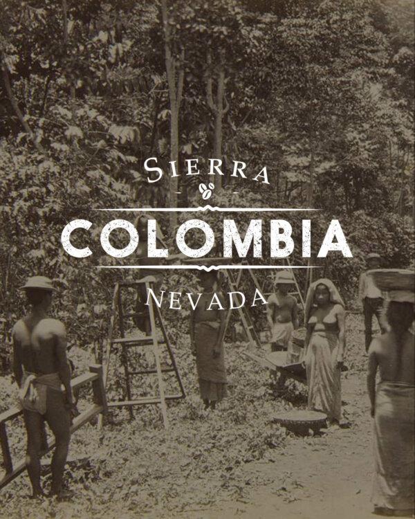 Кафе на зърна Колумбия Sierra Nevada