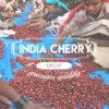 Кафе Индия Чери безкофеин – India Cherry Decaf