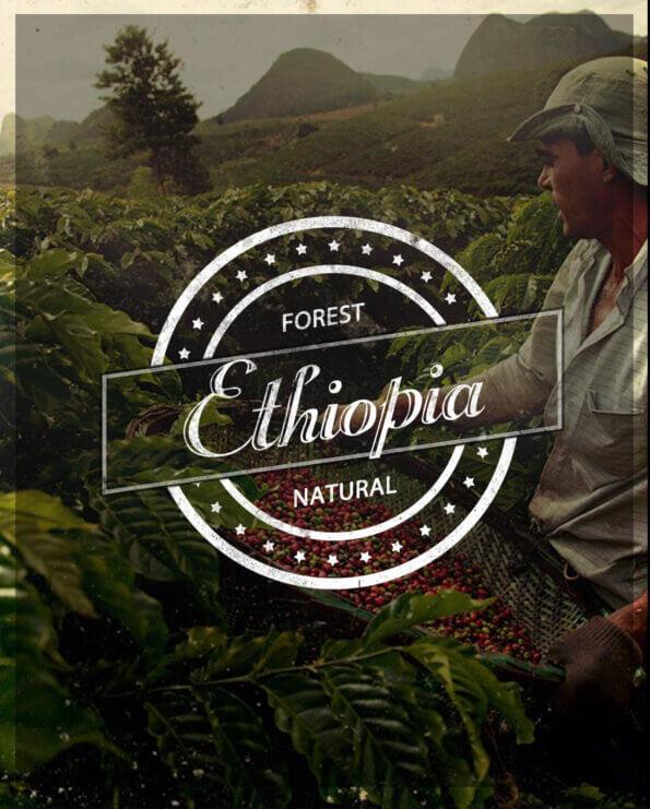 Кафе на зърна Етиопия – Ethiopia Forest Natural
