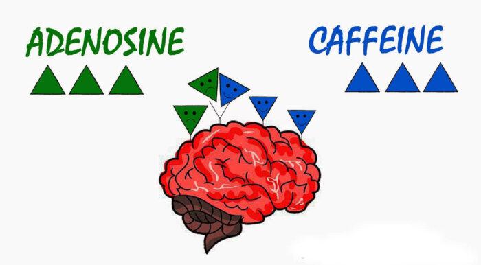 кофеина