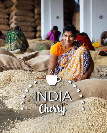 Кафе на зърна Индия Чери - India Cherry Organic robusta AA