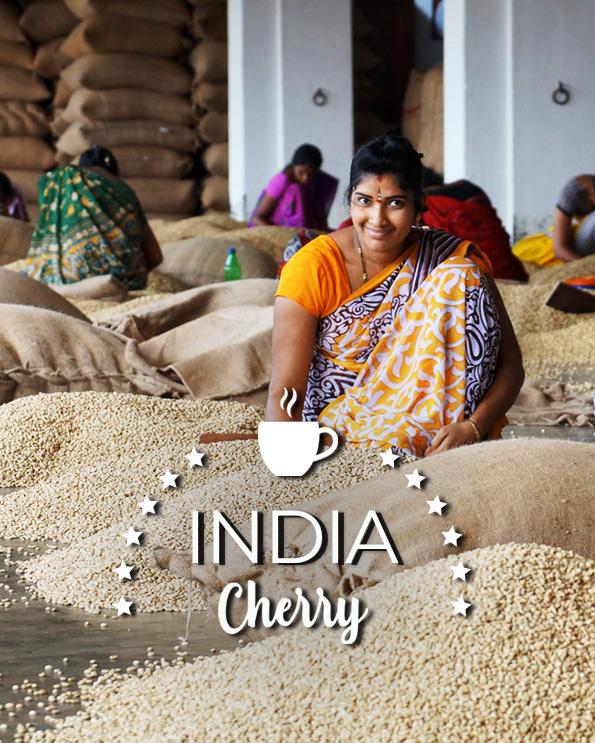 Кафе на зърна Индия Чери – India Cherry Organic robusta AA