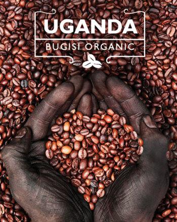 Кафе на зърна Уганда - Uganda Bugisi Organic